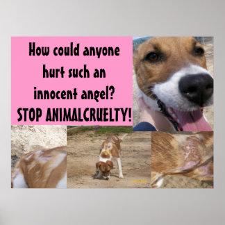 Poster animal de la crueldad