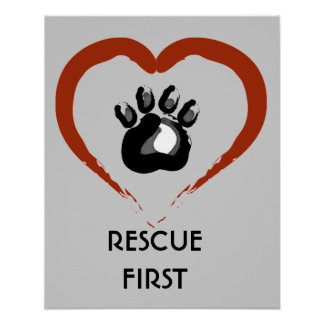 Poster animal del rescate