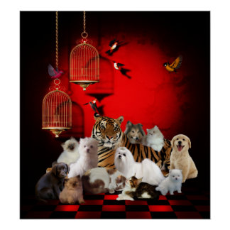 Poster Animals Tiger Cats Dogs Birds Print