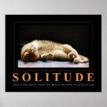 Poster Anti-De motivación de la fotografía del gat