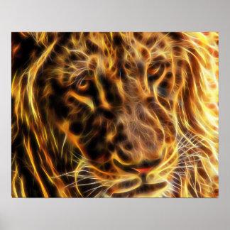 Poster apacible del león (20 x 16) por los