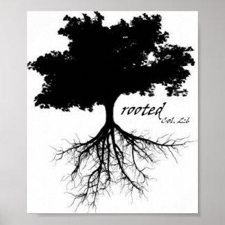 """Poster (árbol """"arraigado"""" con el Col. 2: 6)"""