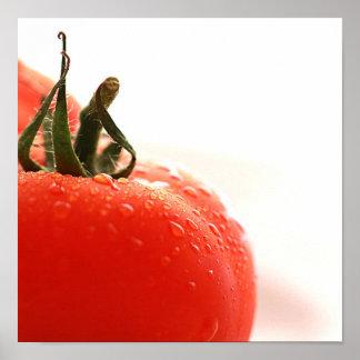 Poster ascendente cercano del tomate