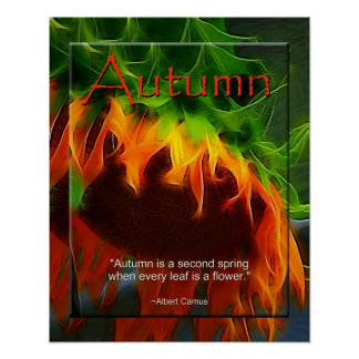Poster - Autumn - Sunflower Posters