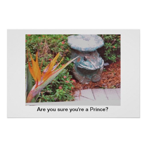 Poster/ave del paraíso/rana/príncipe/flora y fauna