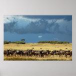 Poster azul de la migración del wildebeest (gnu),