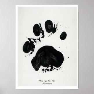 Poster blanco de la impresión de la pata del tigre