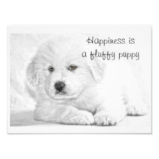 Poster blanco mullido de la felicidad del perrito cojinete