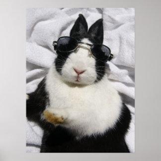 Poster blanco negro holandés del verano del conejo