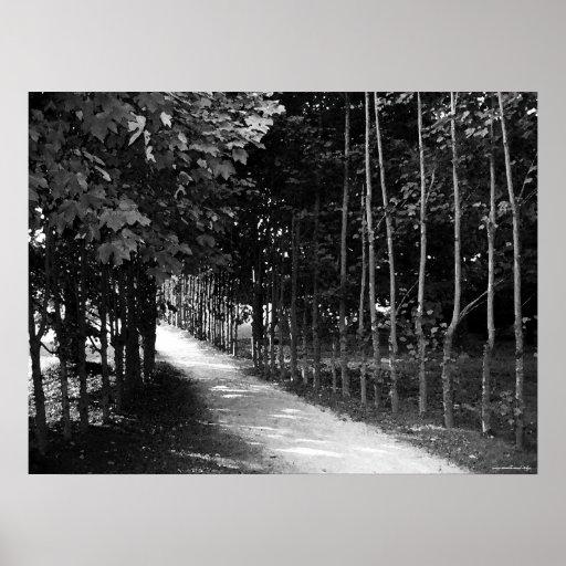 Poster blanco y negro de la fotografía de la natur