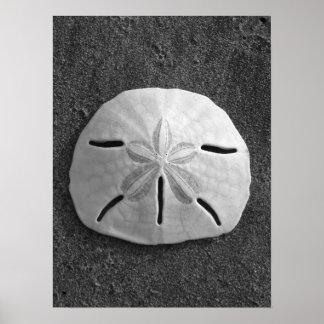 Poster (blanco y negro) del dólar de arena