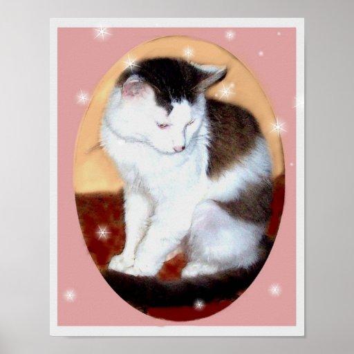 poster blanco y negro del gato