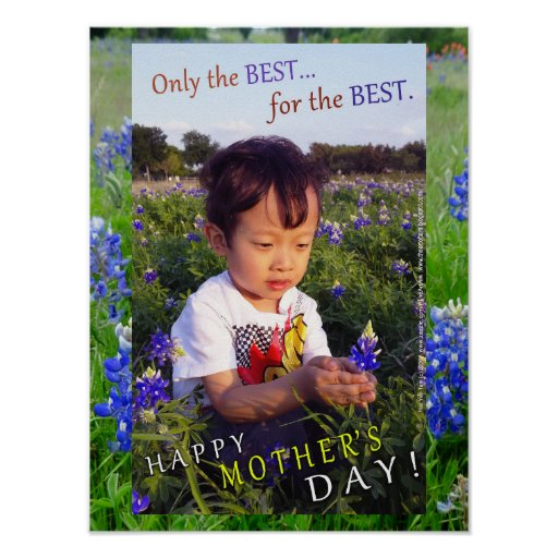 Poster - Blue Bonnet Mother's Day