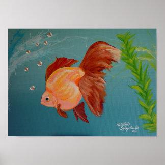 Poster Bodacious del Goldfish de Ryukin