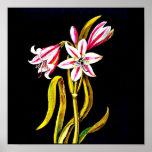 Poster-Botanical Art-Mary Delany 3