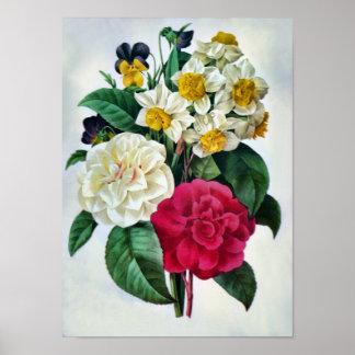 Poster botánico del ramo de la flor