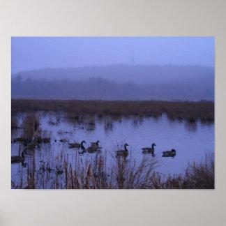 Poster brumoso de la fotografía del pantano