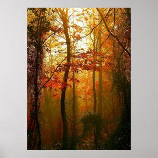 Poster brumoso de la mañana del otoño