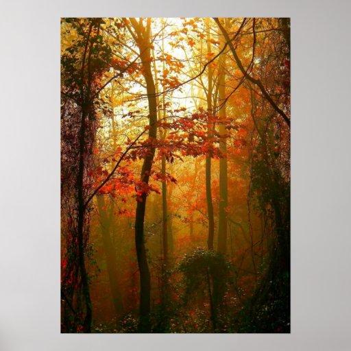 Poster brumoso de la mañana del otoño póster