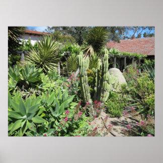 Poster: Cactus en el jardín de la misión, San Luis Póster