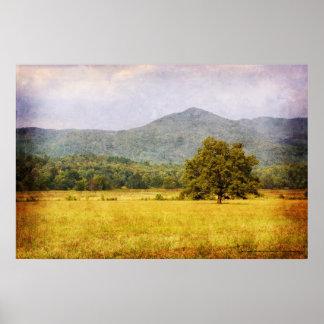 Poster - Cades Cove Tree - Great Smoky Mt. Nat'l P