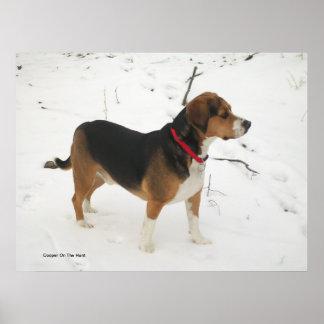 Poster - caza del beagle en nieve del invierno - t