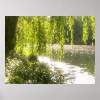 Poster, Central Park Pond