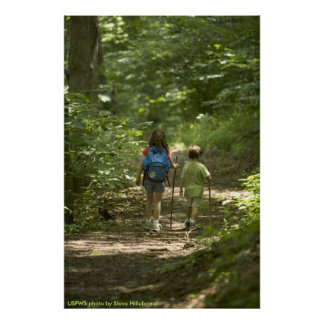 Poster / Children Hiking in the Woods