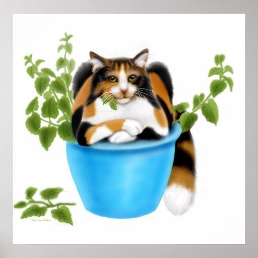 Poster Chomping del gato de calicó del Catnip