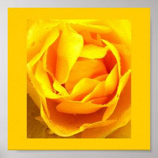 Poster-Color 11 Terapia-Amarillos Póster