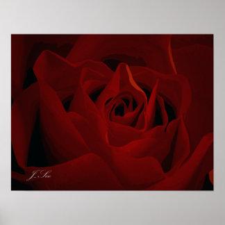 Poster color de rosa de color rojo oscuro