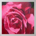 Poster color de rosa rosado del arte
