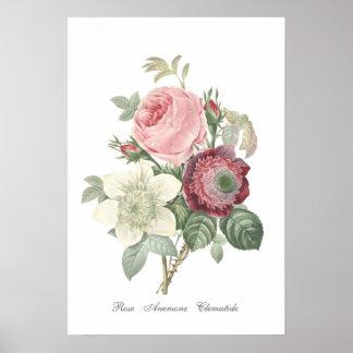 Poster color de rosa y de la anémona