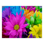 Poster colorido de las flores