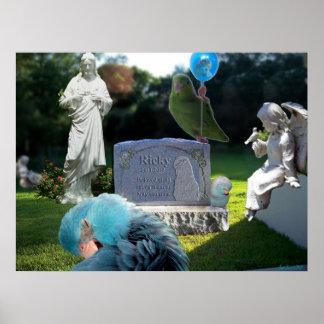 Poster conmemorativo de los ángeles de los pájaros