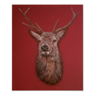 Poster contemporáneo del macho del ciervo común de