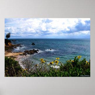 poster - Corona del Mar cove
