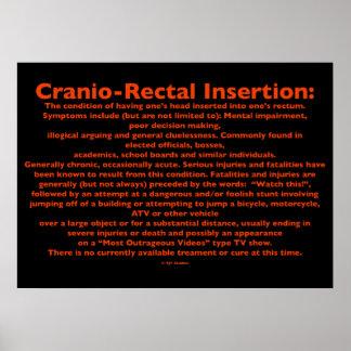 Poster Cranio-Rectal de la inserción