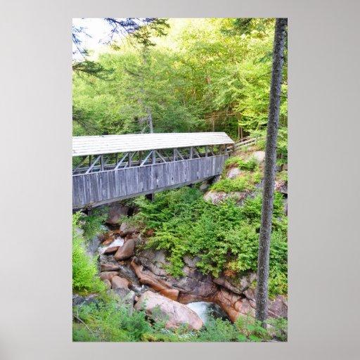 Poster cubierto del pino del centinela del puente
