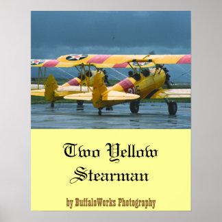 Poster de 2 Stearman