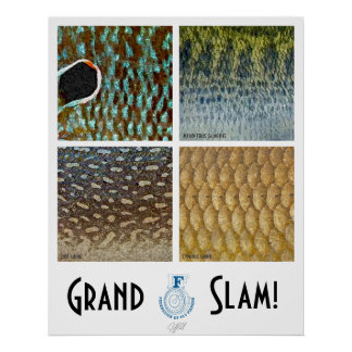 Poster de agua caliente del Grand Slam