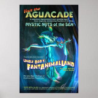 Poster de Aguacade
