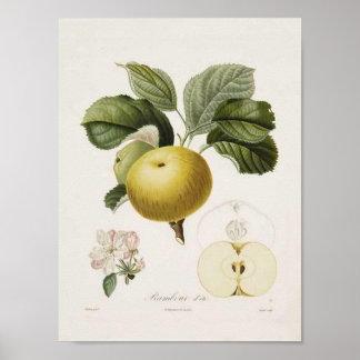Poster de Apple del vintage