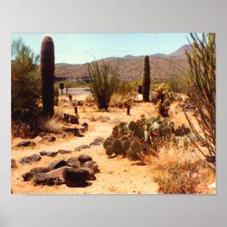Poster de Arizona de la abuela