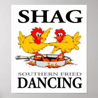 Poster de baile frito meridional de la pelusa clar