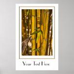 Poster de bambú pacífico de la selva