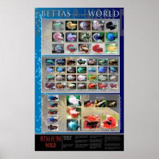 Poster de Betta