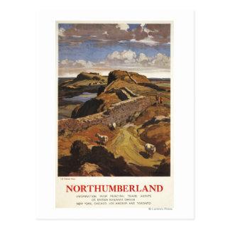 Poster de British Rail de la pared y de las ovejas Tarjeta Postal