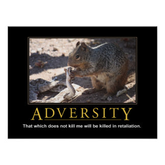 Poster de Demotivational: Adversidad Póster