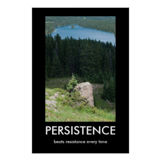 Poster de Demotivational de la persistencia